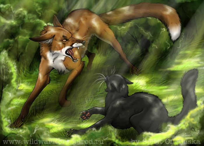 594 best images about Warrior cats are awesome on ...