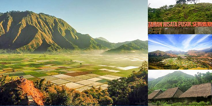 Sembalun Village is located in Sembalun District, East Lombok regency, Nusa Tenggara Barat. The village is located right at the foot of Rinjani, one of the most beautiful mountains in Indonesia.
