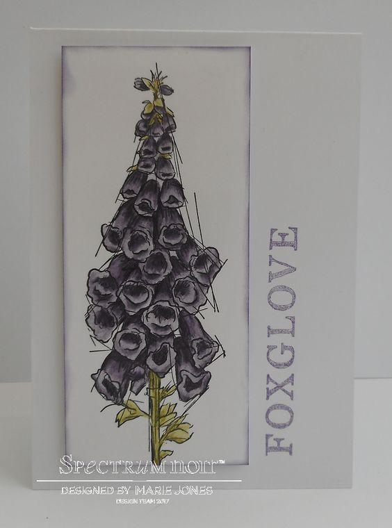 6x4 card made using Sheena – A Little Bit Sketchy – Foxglove stamp coloured with Spectrum Noir ColourTint - Dusky Lilac, Leaf Green & Moss. Designed by Marie Jones. #spectrumnoir #crafterscompanion
