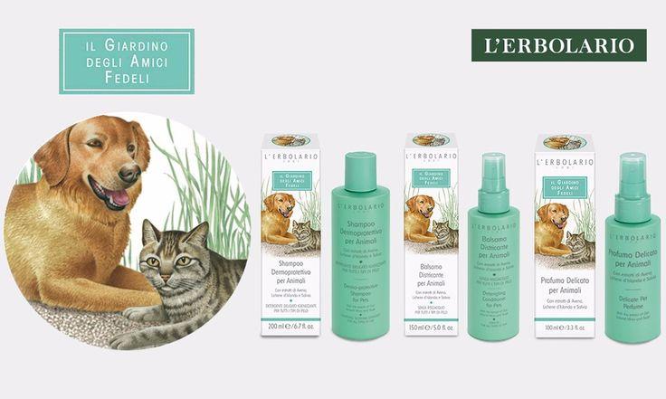 L'Erbolario: Shampoo, Balsamo e Profumo per animali - http://www.beautydea.it/lerbolario-shampoo-balsamo-profumo-animali/ - Un'esclusiva linea di prodotti Beauty per la cura delicata e ricca d'amore per i nostri amici a quattro zampe!