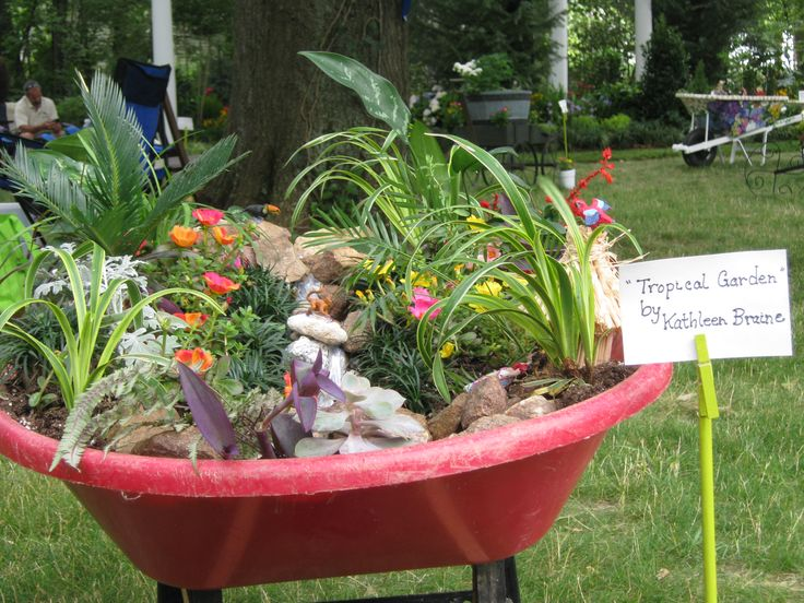 "Cultural Art Center of Douglas County - Hydrangea Festival - Fairy Miniature Wheelbarrow Garden.  ""Tropical Garden"" - by Kathleen Braine"