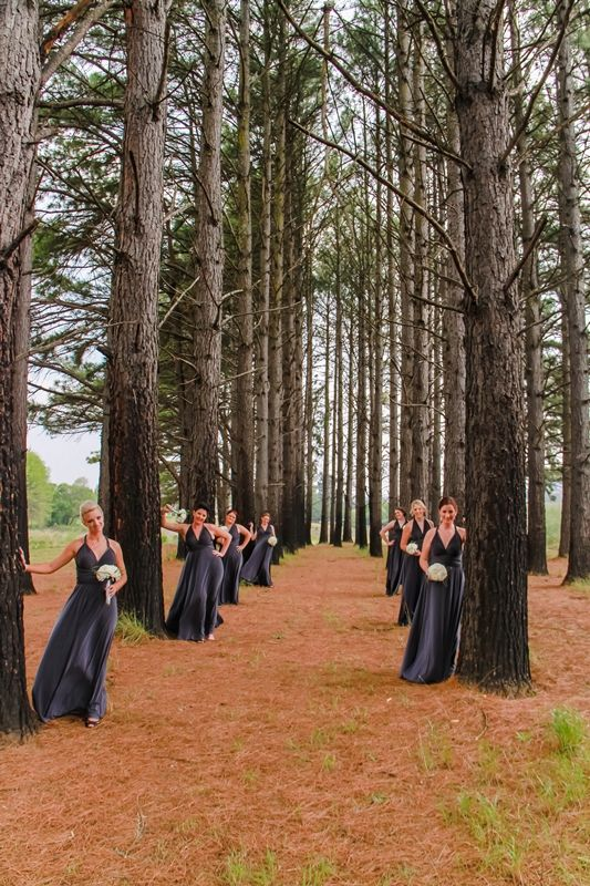 photo in the woods at Glengary Midlands photographer Daniel L Meyer by L'Afrique Photography