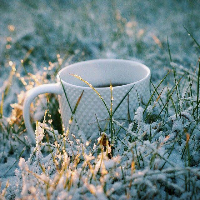 картинки осень снег выпал доброе утро открытка станет приятным