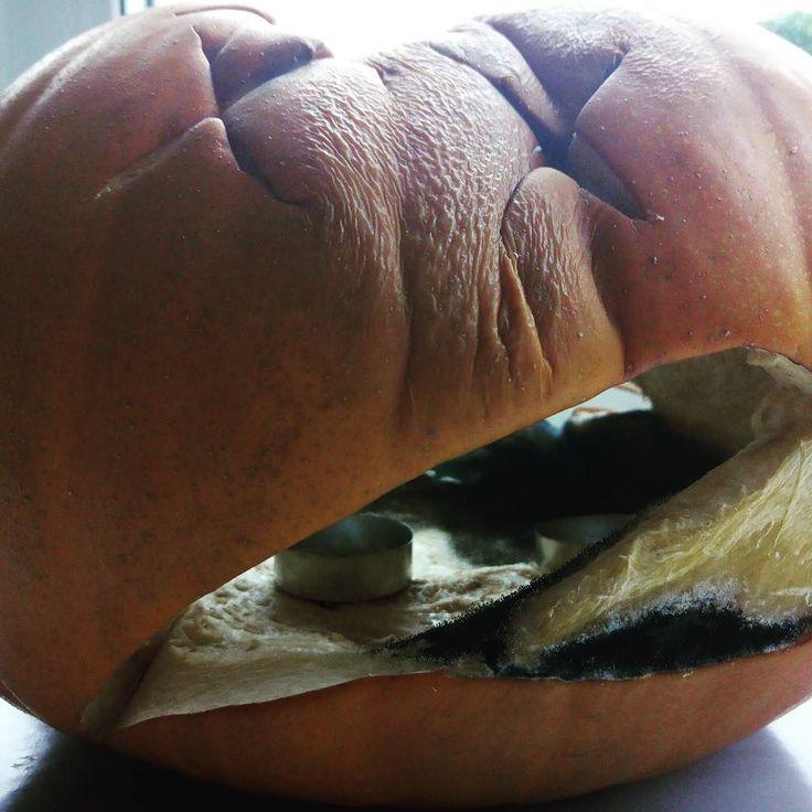 Rotten #pumpkin for #halloween Bleurgh
