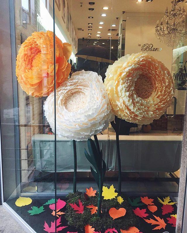 Наши цветы узнаваемы, почерк художника есть...🌼🌼🌼 #цветы#большиепионы#пионы#гигантскиецветы#большиецветы#огромныецветы#витрины#витринасалона#декорации#ручнаяработа#нашицветы#бутафорныецветы#creative_decor#decoration#windowdisplay#windowdesign#giantpeony#giantflowers#flowers#bigflowers#hugeflowers#beauty#peonies#handmade