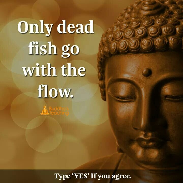 Only dead fish follow the flow.