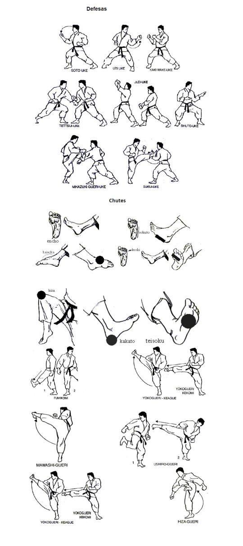Técnicas Golpes de Karatê defesa e gueri