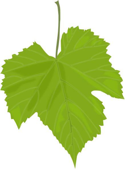Grape Leaf Clip Art At Clker Com   Vector Clip Art Online Royalty
