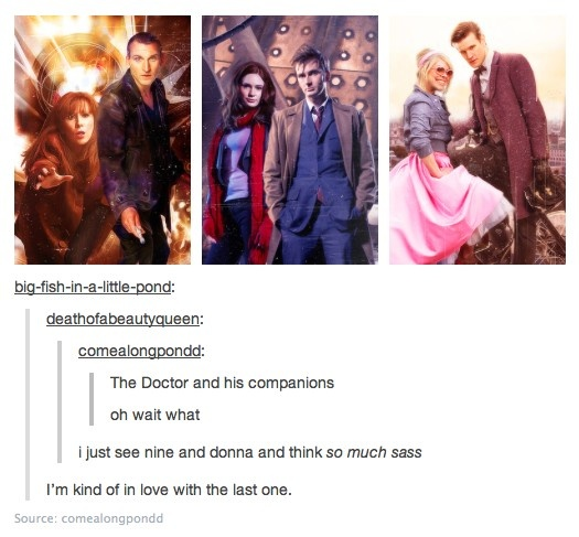 The Doctor and his companions ~ I have to agree about Donna and 9