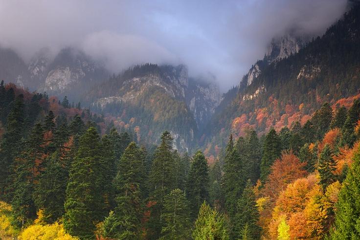 Cheile Bicazului - Transylvania