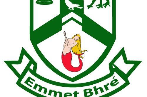 Bray Emmets GAA Club Notes November 11 | WicklowNews