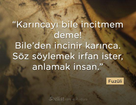 Karıncayı bile incitmem deme! Bile'den incinir karınca. Söz söylemek irfan ister, anlamak insan. #fuzuli #fuzuli sözleri