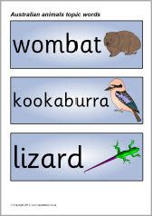 Australian animals topic word cards (SB2331) - SparkleBox