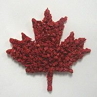 Canadian Maple Leaf is perfect for Canada Day craft decoration. Pattern included. www.freekidscrafts.com