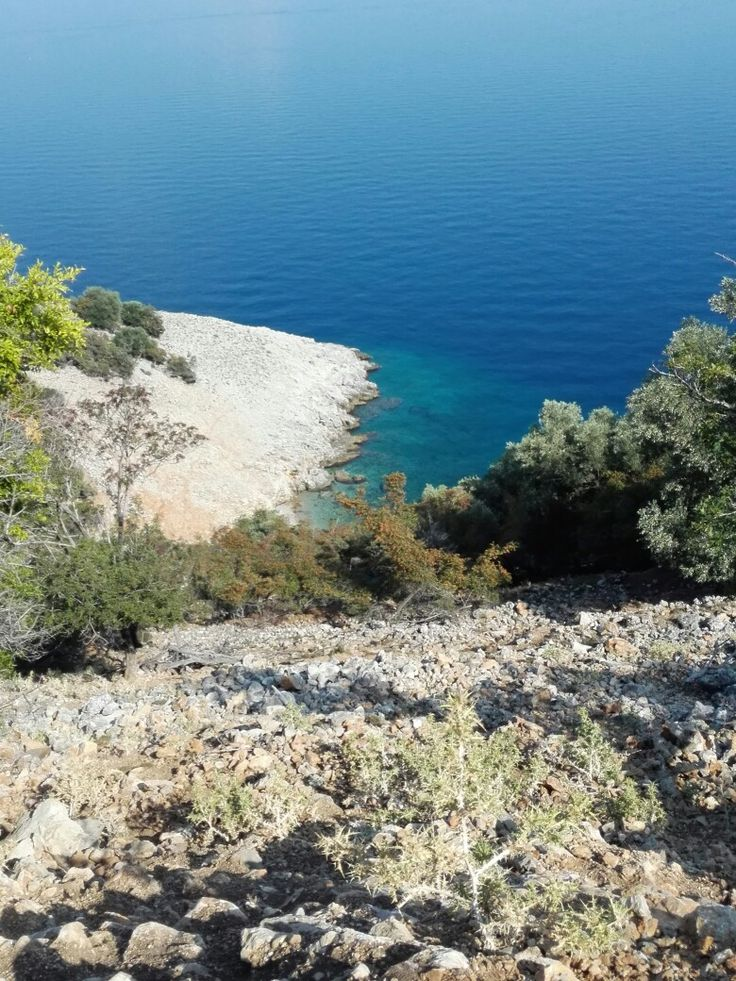 Insel Cres Bucht