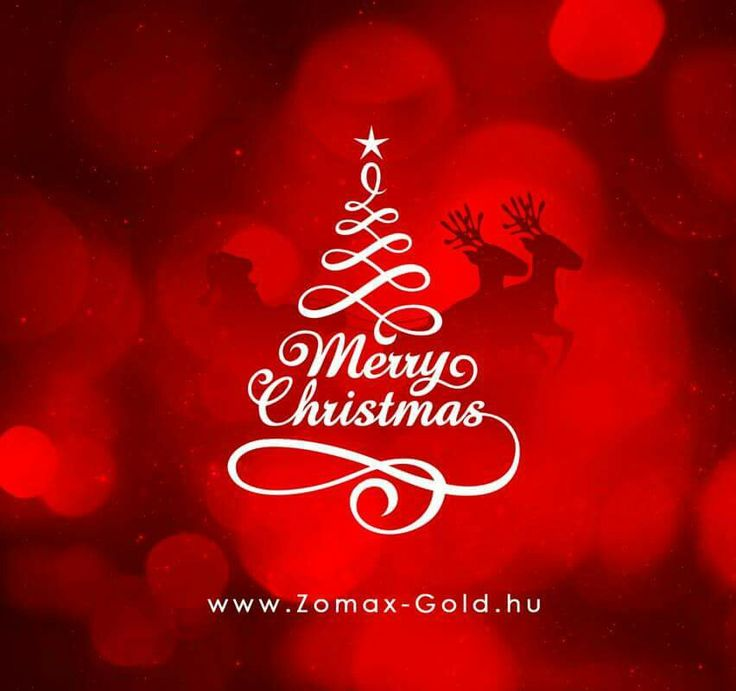Kellemes Karácsonyi Ünnepeket és sikerekben gazdag  Boldog Új Évet kívánunk! www.Zomax-Gold.hu
