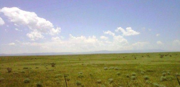 The grass plains of Northeast Daland