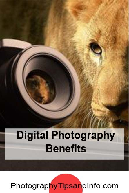 The benefits of digital photography. Read the article here: