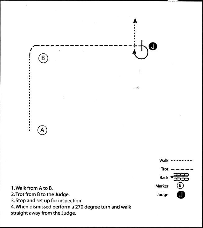 Beginner Showmanship Patterns   for more patterns go to showmanship practice patterns a chain is not ...