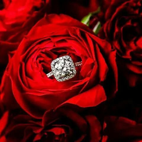 WWE Diva Eva Marie's gorgeous wedding ring from her husband Jonathan Coyle.