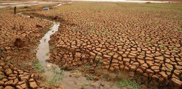 Como as secas em SP e no AM podem estar ligadas às mudanças climáticas