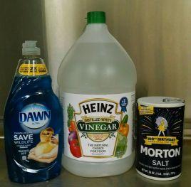 Some facts on vinegar based homemade weed spray. http://weedcontrolfreaks.com/2014/06/salt-vinegar-and-glyphosate/