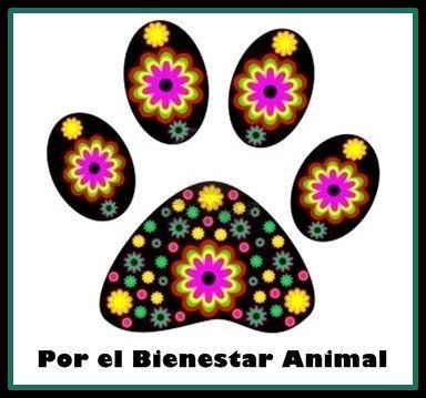 ¡Nuevo en el Directorio! >>> Por el Bienestar Animal  #Sopuerta (#Bizkaia) - Terapeuta Floral / Reiki / Peluquería Canina y Felina / Ayudante Técnico de Veterinaria / Servicio Online  http://www.gedva.es/profesional/por-el-bienestar-animal/