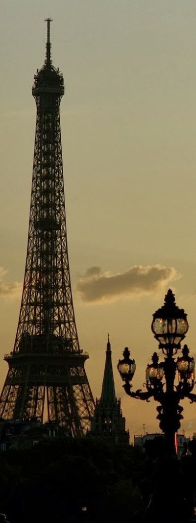 Sunset in Le Pont Alexandre - Paris | France