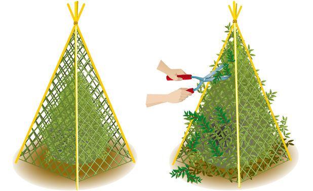 die besten 25 buchsbaum schneiden ideen auf pinterest buchs schneiden topiarieanlagen und. Black Bedroom Furniture Sets. Home Design Ideas