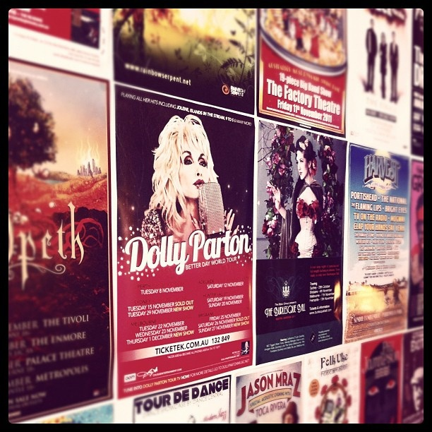 Dolly and her poster pals in #bondi beach