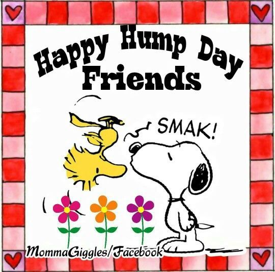 Happy Hump Day Friends Snoopy Quote good morning wednesday hump day wednesday…