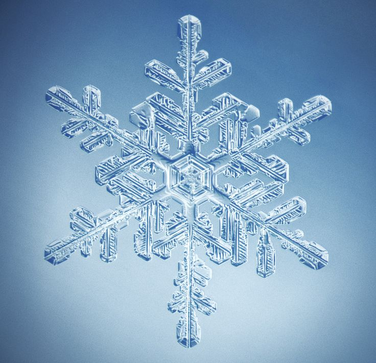 Snowflakes Come In 35 Different Shapes Scientists