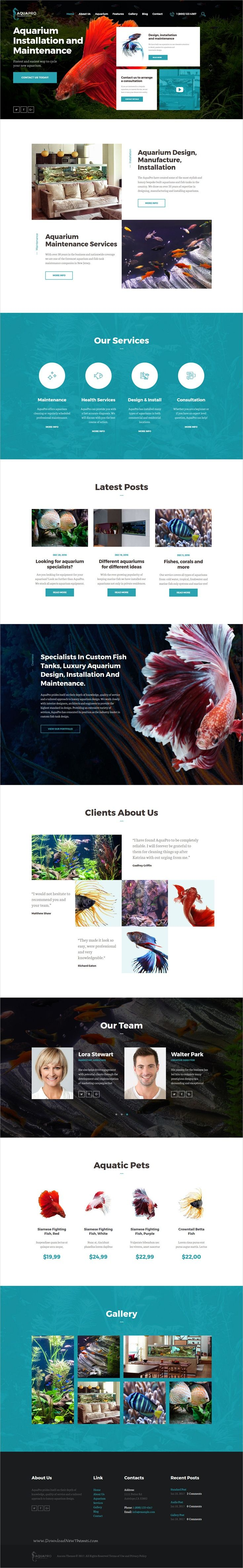 AquaPro is modern and functional design responsive #WordPress theme for #Aquarium services and business online #store eCommerce website download now➩ https://themeforest.net/item/aquapro-aquarium-services-online-store/19811882?ref=Datasata