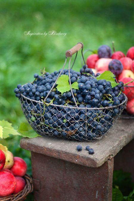 It's a beautiful world! — pentydeval:   (via Blueberry: L'automne dans une...