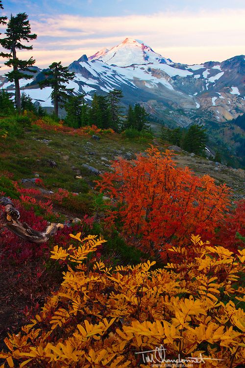 Autumn sunrise lights up Mt Baker in the North Cascades National Park of Washington State by Timothy Chandonnet