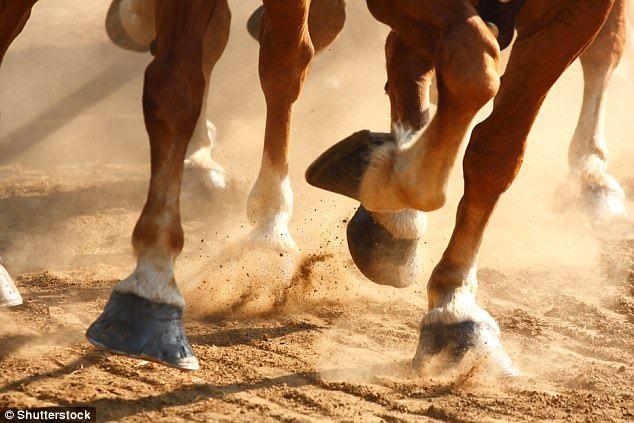 Τα λιβάδια μεταμόρφωσαν τα άλογα | Πώς το άλογο έχασε τα δάχτυλα των ποδιών του