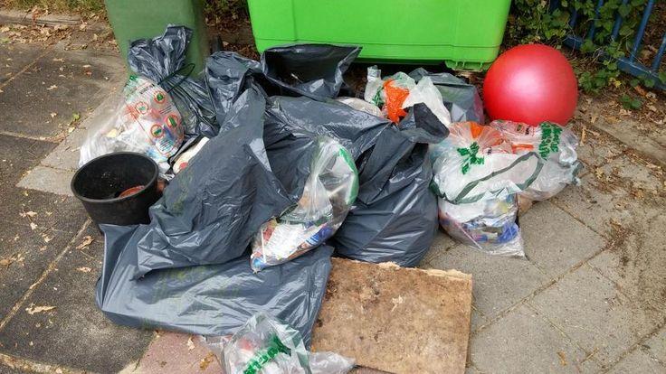 #harlekijn | groep 8 | Het resultaat van 20 minuutjes zwerfafval verzamelen in de wijk.  #jeelo-project Berscherm je milieu