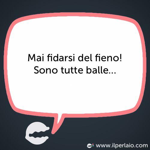 Mai fidarsi del fieno! Sono tutte balle... #perla #perle #frase #frasi #humor #divertente #ridere #sorridere #fidarsi