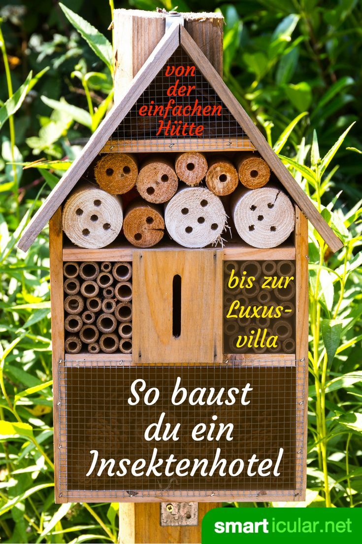 Insektenhotel Aus Dosen To Provide A Nesting Aid To Useful Insects You Do Not Have