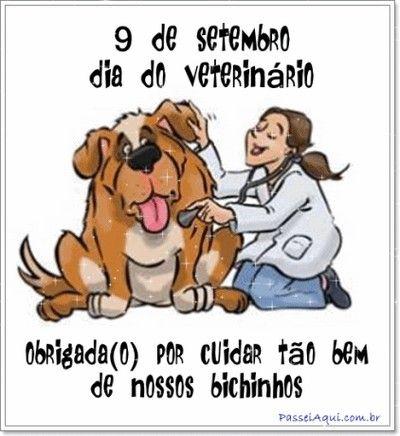cartões engraçados para o dia do medico veterinario