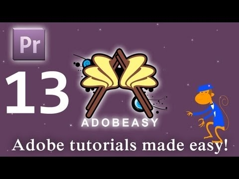 The Muvipixcom Guide to Adobe Premiere Elements 10 The tools and how to use them to make movies on  your personal computer using the bestselling video editing software program