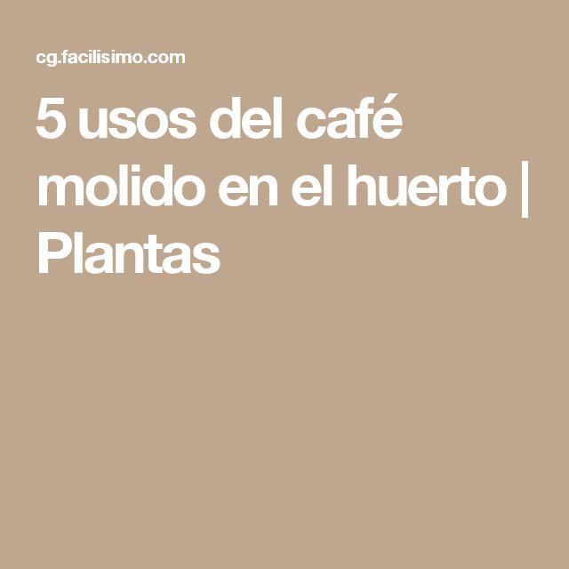 5 usos del café molido en el huerto | Plantas