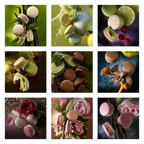 9 collection of Les Éphémére Jardin by Pierre Hermé - gift selected by #sfizzy