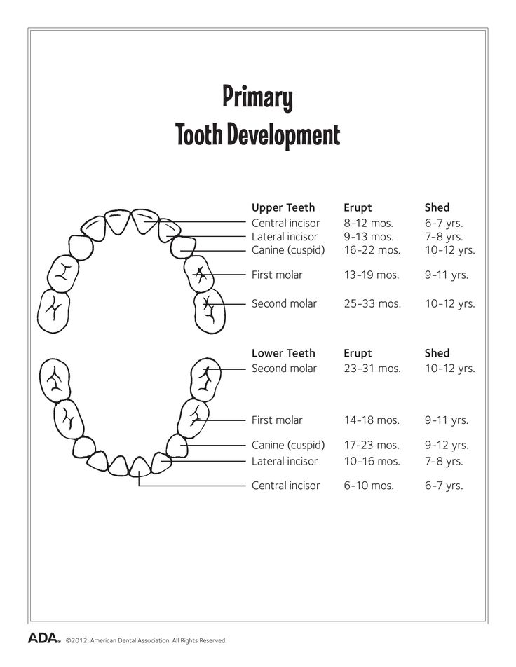 good oral health is a necessity Medical necessity means that a health intervention is an otherwise covered category of service, is not specifically excluded from coverage, and is medically.