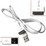 Dock Connector to USB 2.0 Cable for iPod and iPhone (White) (Electronics)