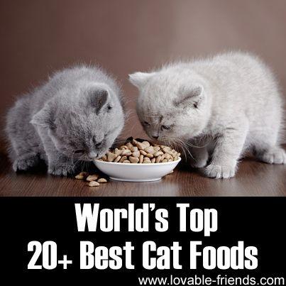 Cat Food Samples Nz