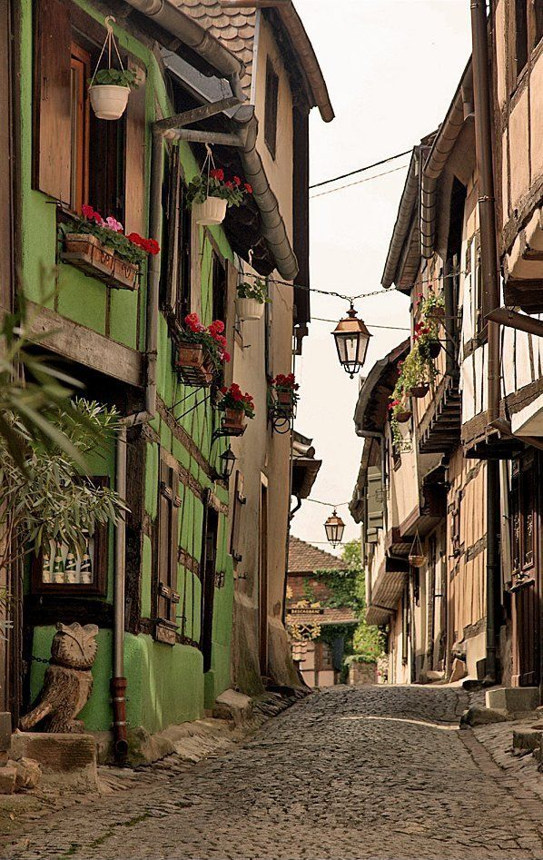 Medieval Riquewihr - Alsace, France // by Martien Uiterweerd via Flickr..We lived close to it!
