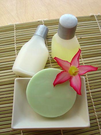 Cosmetica Natural Casera. Shampoo casero