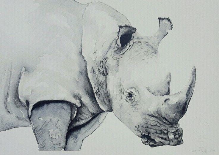 Rhino black and white 2 Artist Lorna Pauls  Watercolors on 1/4 sheet 300g Bockingford watercolour paper  Done February 2017