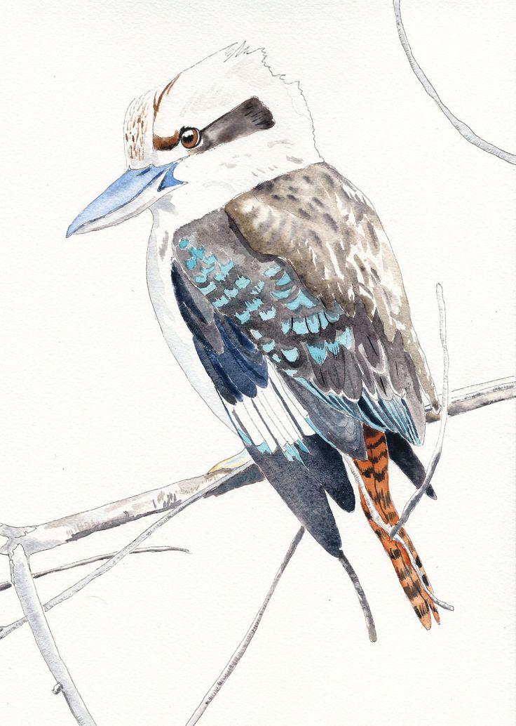 Hello Kooky! - Fine Art Gicée Print of a kookaburra by LittleRowanRedhead on Etsy